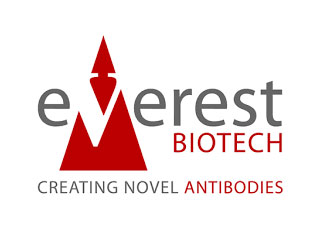 Everest-Biotech@2x